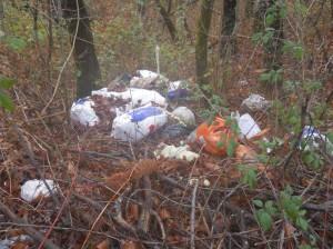 i rifiuti abbandonati lungo la sp523
