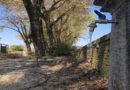 Fornovo acqua torbida nei rubinetti Montagna 2000 ripara con rimborsi e un massiccio intervento sulle fonti