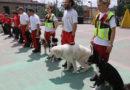 Festa dello sport a Felegara di Medesano