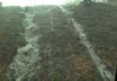 Le immagine dell'acquazzone di questa mattina.