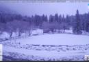 La neve di questa mattina