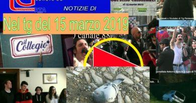 TG Parmense del 15 Marzo 2019
